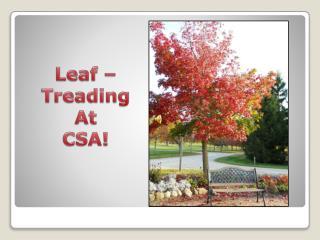 Leaf – Treading At CSA!