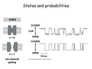 States and probabilities