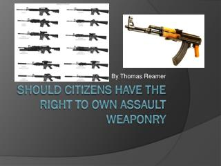 Should citizens have the right to own assault weaponry