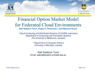 Financial Option Market Model  for  Federated Cloud  Environments