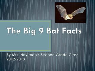 The Big 9 Bat Facts By Mrs.  Hoylman's  Second Grade Class 2012-2013