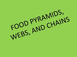 FOOD PYRAMIDS, WEBS, AND CHAINS