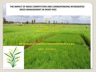 THE IMPACT OF WEED COMPETITION AND CORRESPONDING INTERGRATED 		WEED MANAGEMENT IN PADDY RICE