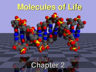 Molecules of Life