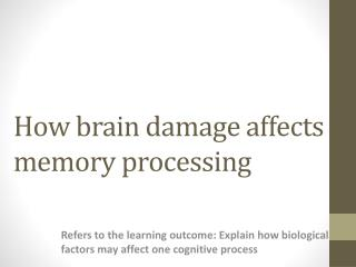 How brain damage affects memory processing