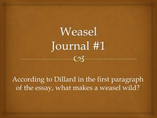 Weasel Journal #1