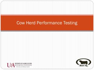 Cow Herd Performance Testing