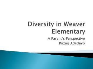 Diversity in Weaver Elementary