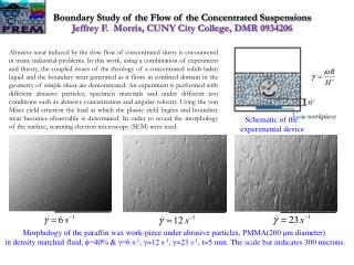 Boundary Study of the Flow of the Concentrated Suspensions