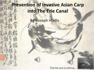 Prevention of Invasive  Asian Carp  into  The  Erie Canal