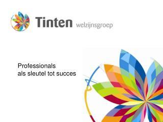 Professionals  als sleutel tot succes