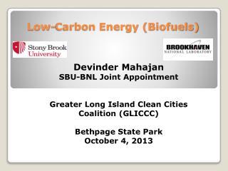 Low-Carbon Energy (Biofuels)