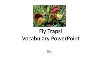 Fly Traps! Vocabulary PowerPoint
