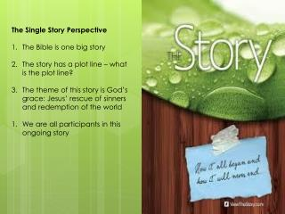 The Single Story Perspective The Bible is one big  story