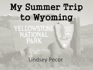 My Summer Trip to Wyoming