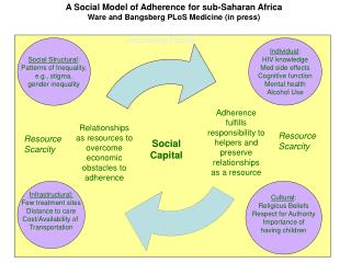 Social Structural : Patterns of Inequality, e.g., stigma, gender inequality