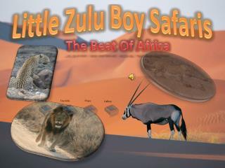 Little Zulu Boy Safaris