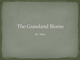 The Grassland Biome