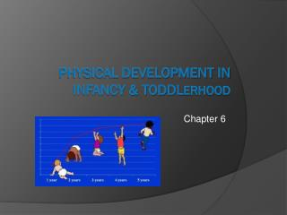 Physical Development in Infancy & Toddl erhood