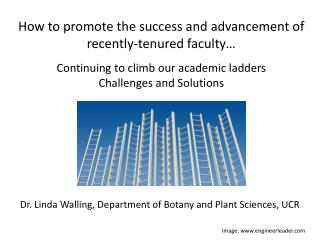 How to  promote the success and advancement of recently-tenured  faculty…