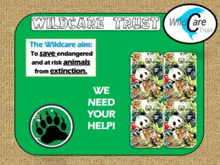 The Wildcare aim:  To  save  endangered and at risk  animals  from  extinction.