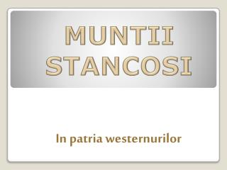 MUNTII STANCOSI