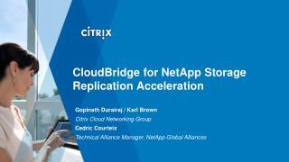 CloudBridge for NetApp Storage Replication Acceleration