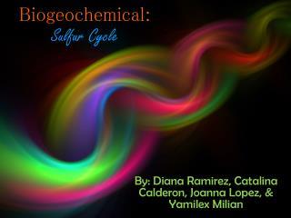 Biogeochemical: Sulfur Cycle