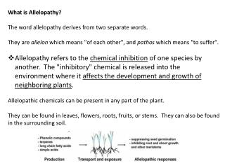 What is  Allelopathy ? The word  allelopathy  derives from two separate words.