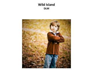 Wild Island DLM