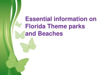 Essential information about Florida Theme parks and Beaches