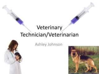 Veterinary Technician/Veterinarian