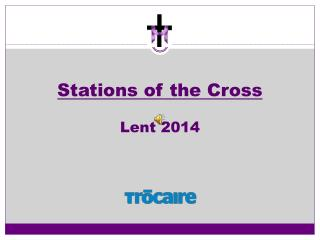 Stations of the Cross Lent 2014