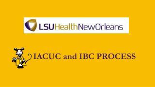 IACUC and IBC PROCESS