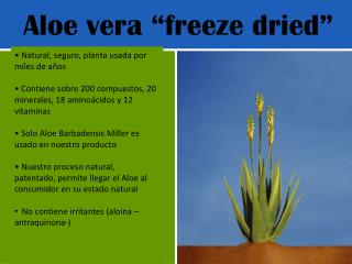 "Aloe  vera  ""freeze dried"""