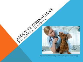 About Veterinarians