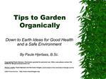 Tips to Garden Organically