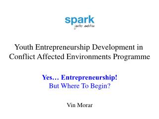 Youth Entrepreneurship Development in  Conflict Affected Environments Programme