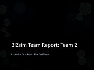 BIZsim  Team Report: Team 2