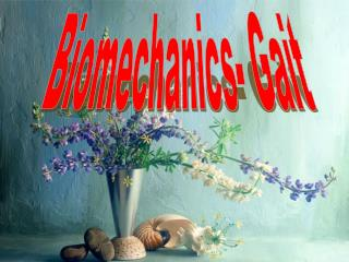 Biomechanics- Gait