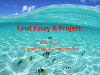 Final Essay & Project: