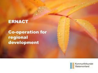 Våra framsteg Halvårsrapport 2012