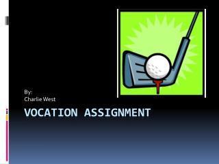 Vocation Assignment
