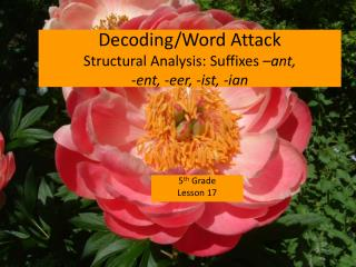 Decoding/Word Attack Structural Analysis: Suffixes  �ant,  - ent , - eer , - ist , - ian