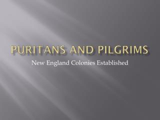 Puritans and Pilgrims