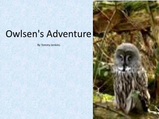 Owlsen's Adventure