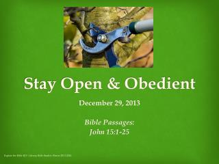 Stay Open & Obedient