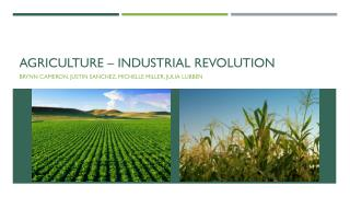 Agriculture – industrial revolution