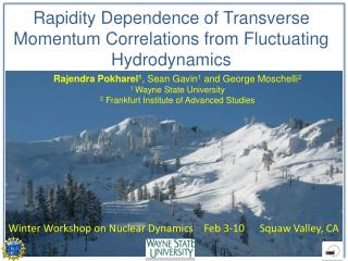 Rapidity  Dependence of Transverse Momentum Correlations from Fluctuating Hydrodynamics