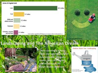 Landscaping and The American Dream